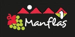logo_manflas11